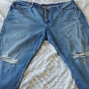 Silver Jeans Co Ladies Size 24 Jeans